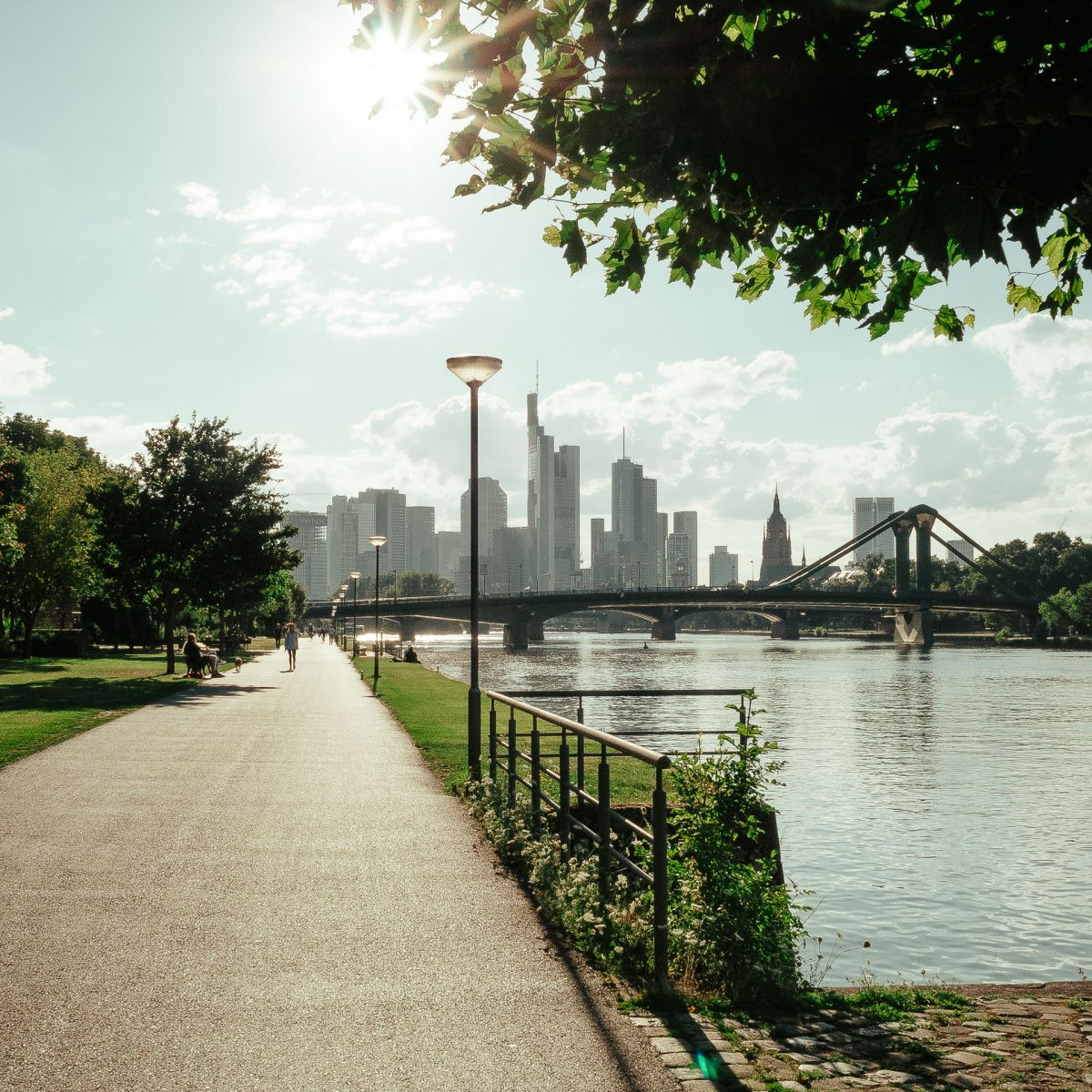 Frankfurt am Main Sommer
