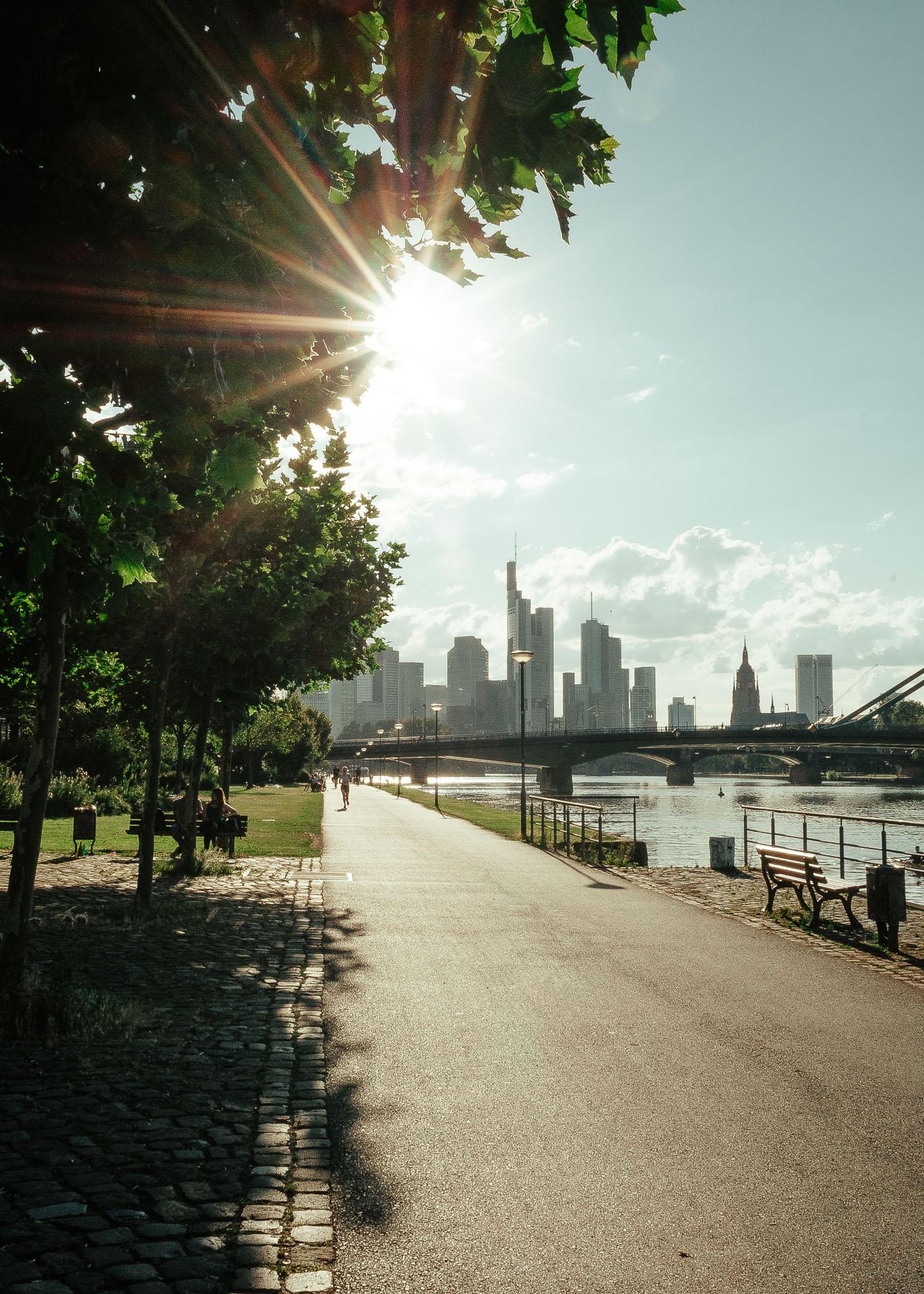 Frankfurt am Main Sommer Ufer