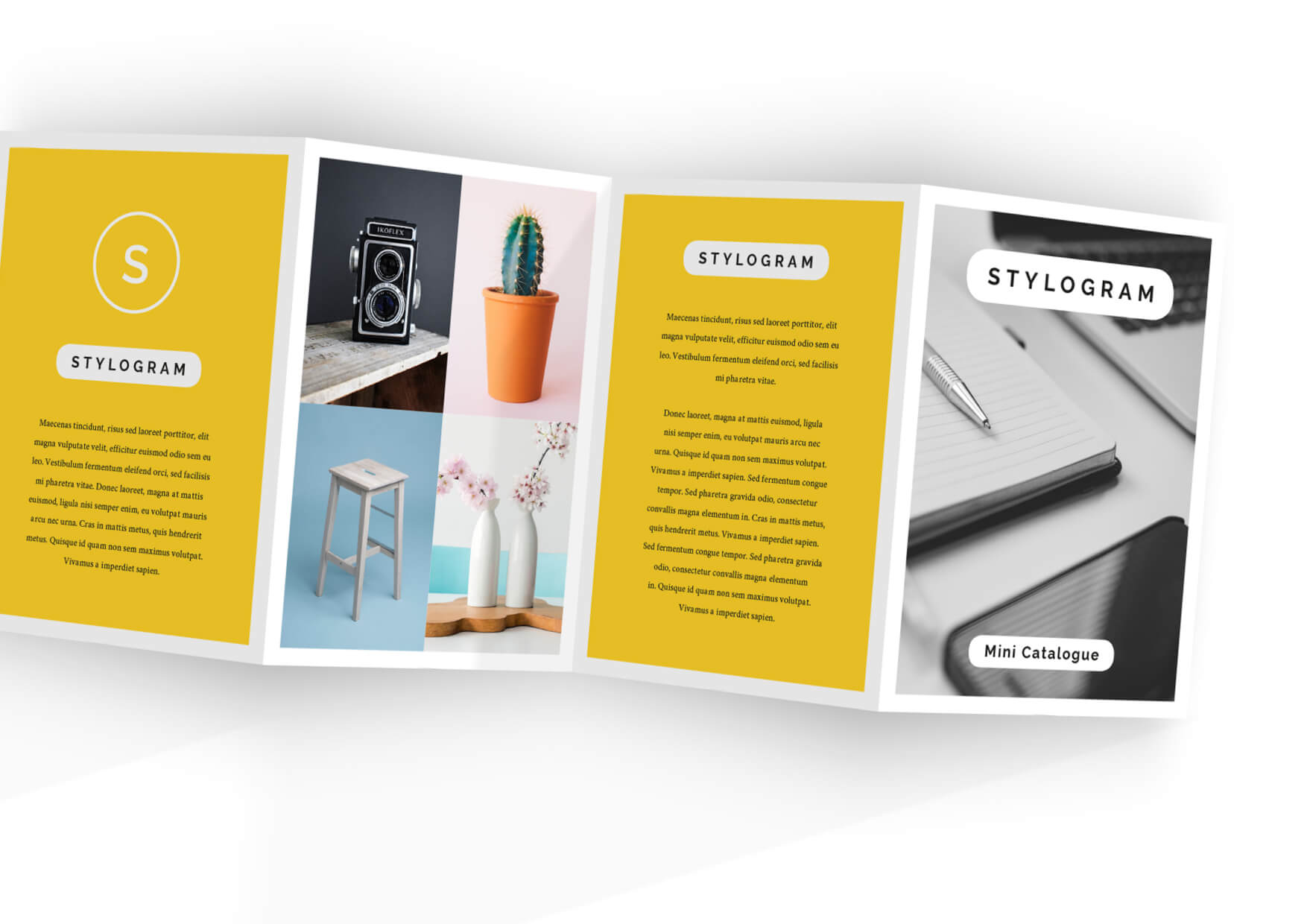 Stylogram Accordion Brochure